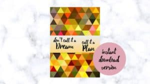 The weight loss planner - Don't call it a dream call it a plan